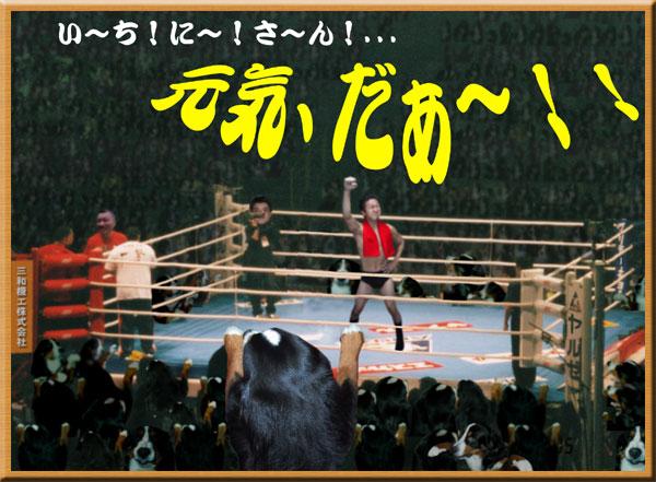 11月【第48号】 元気ですかぁ~!2