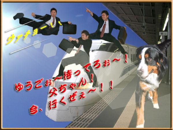 11月【第60号】 早い!速い!